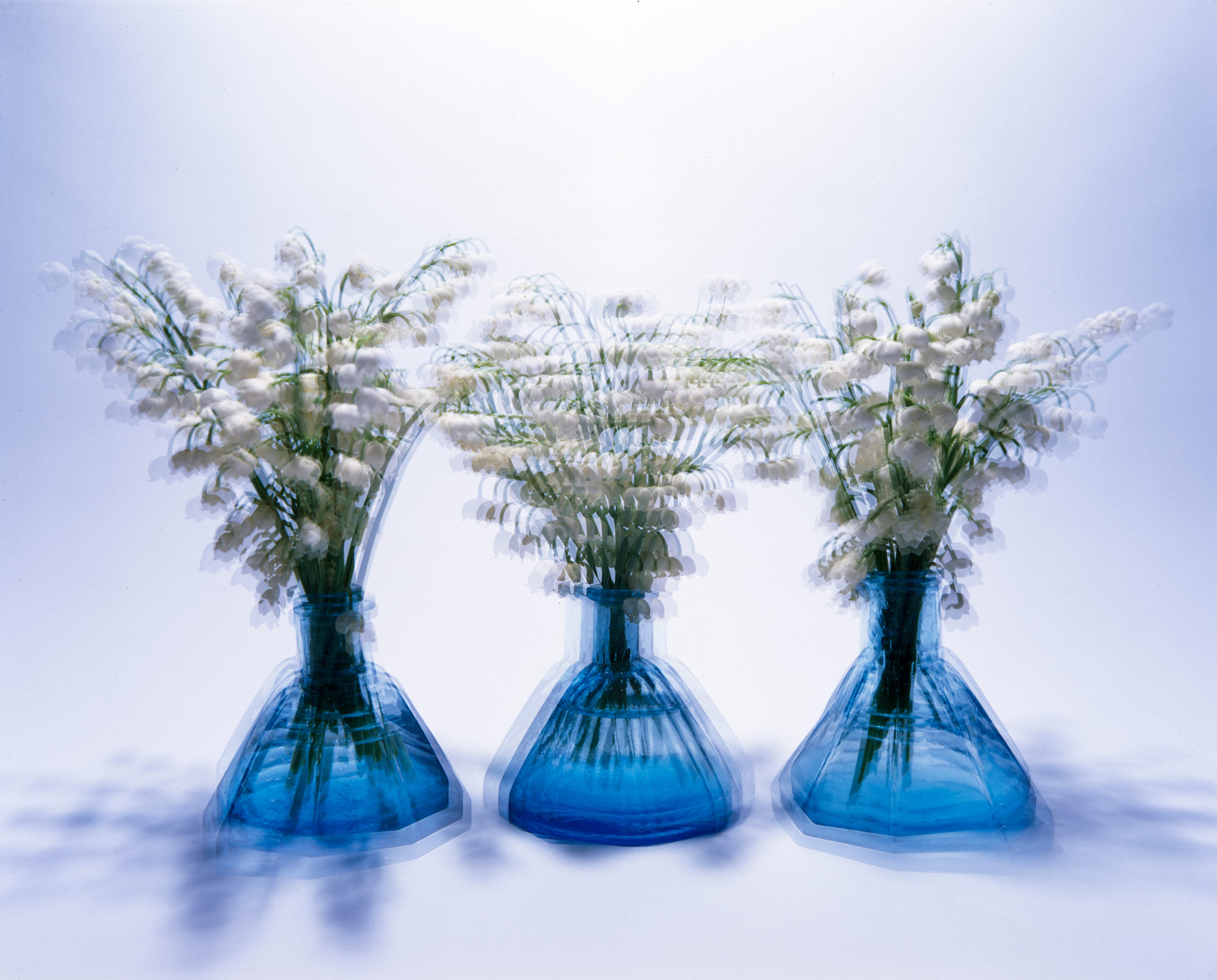 Flowers in Blue Ink Bottles