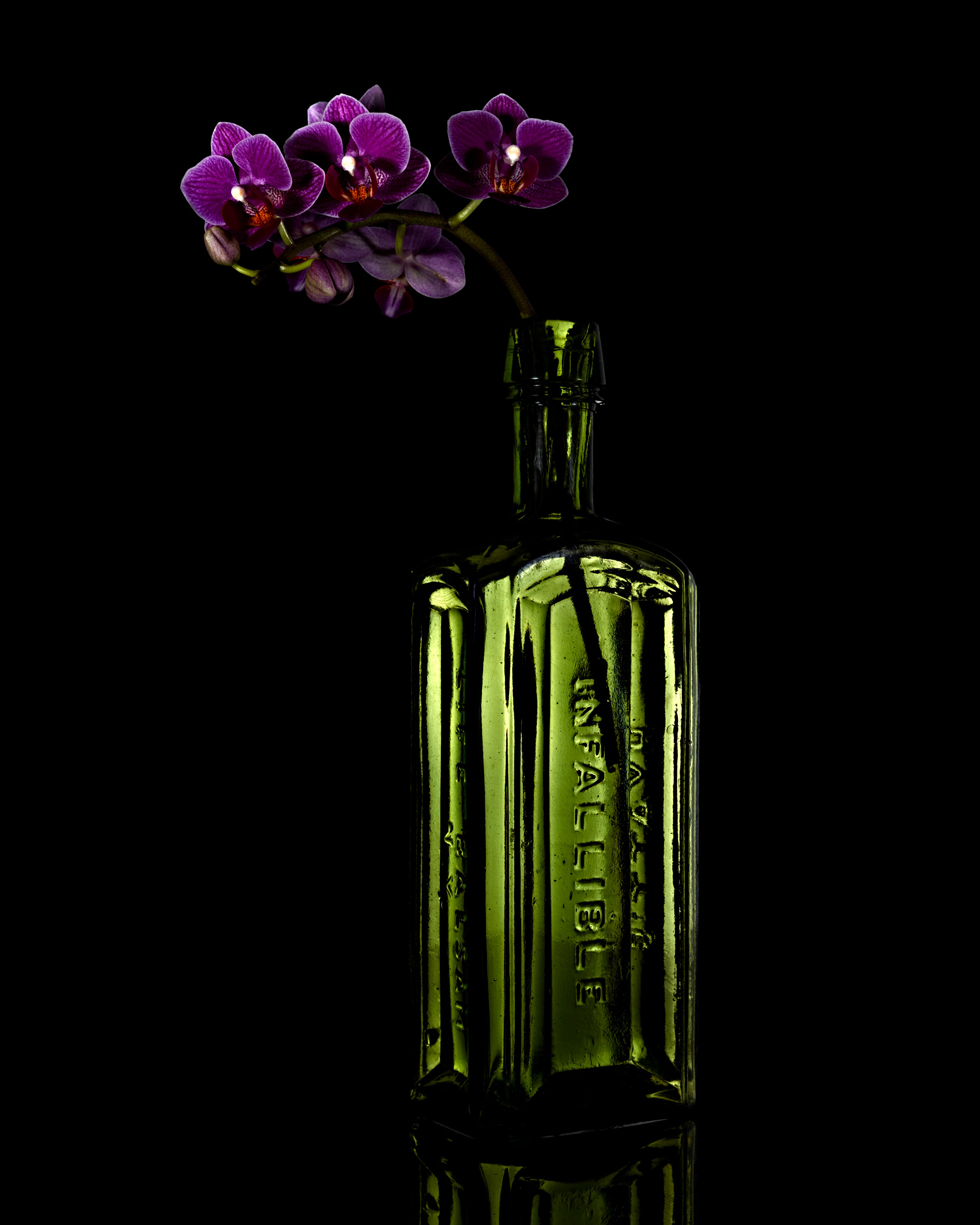 Orchid in a Bottle