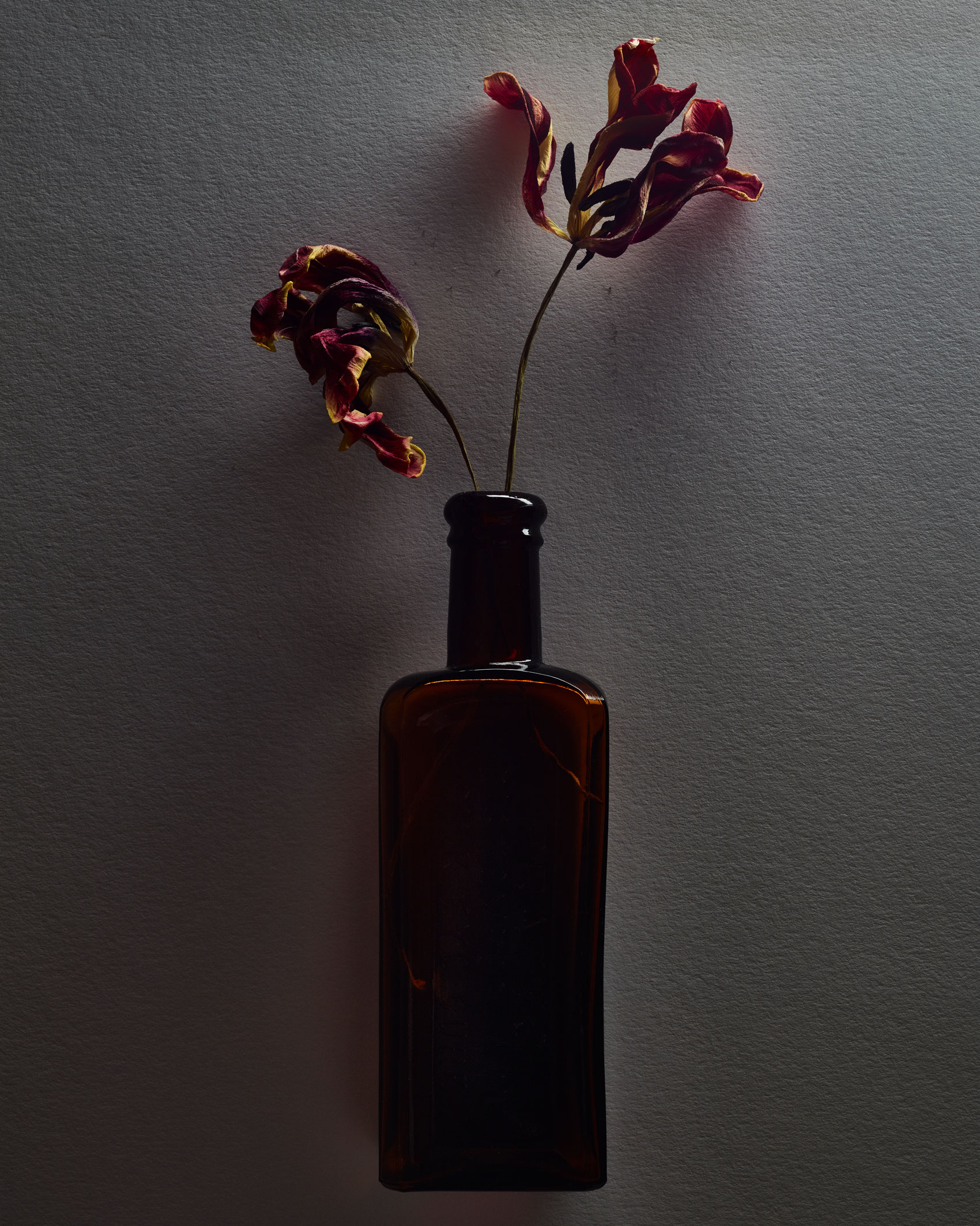 Dried Flowers in a Brown Bottle