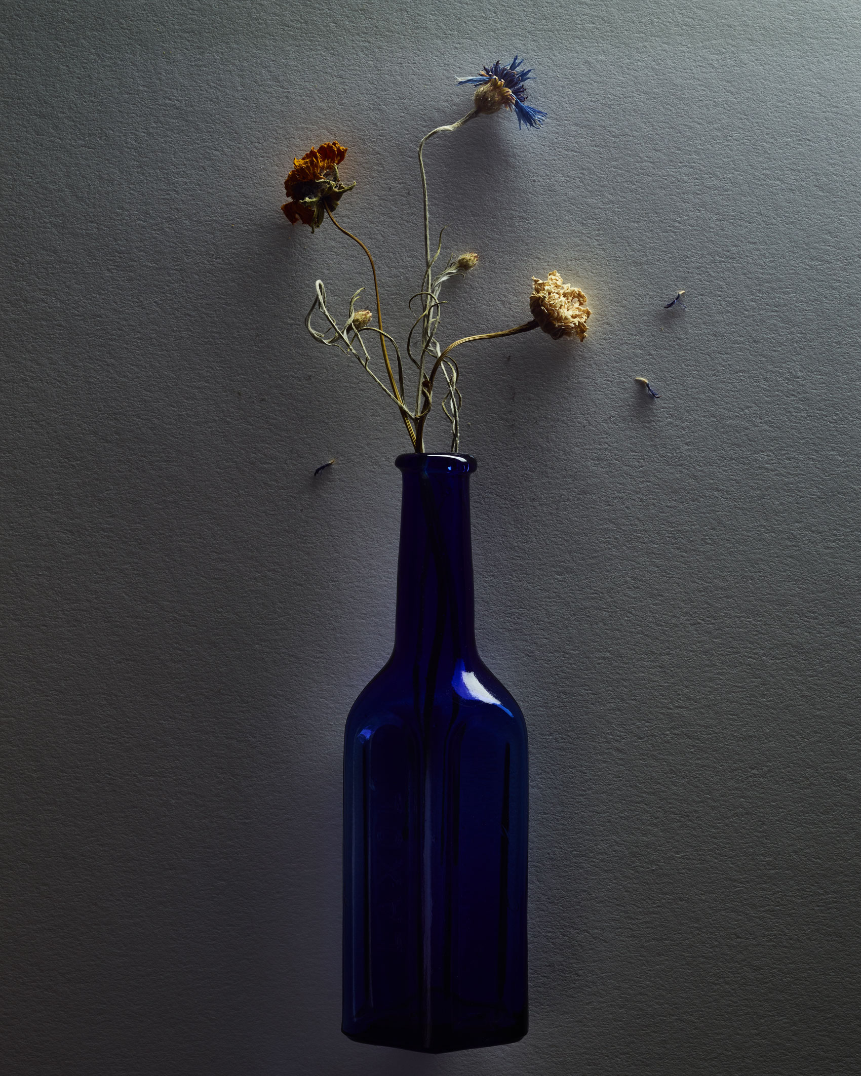 Flowers in  Cobalt Bottles
