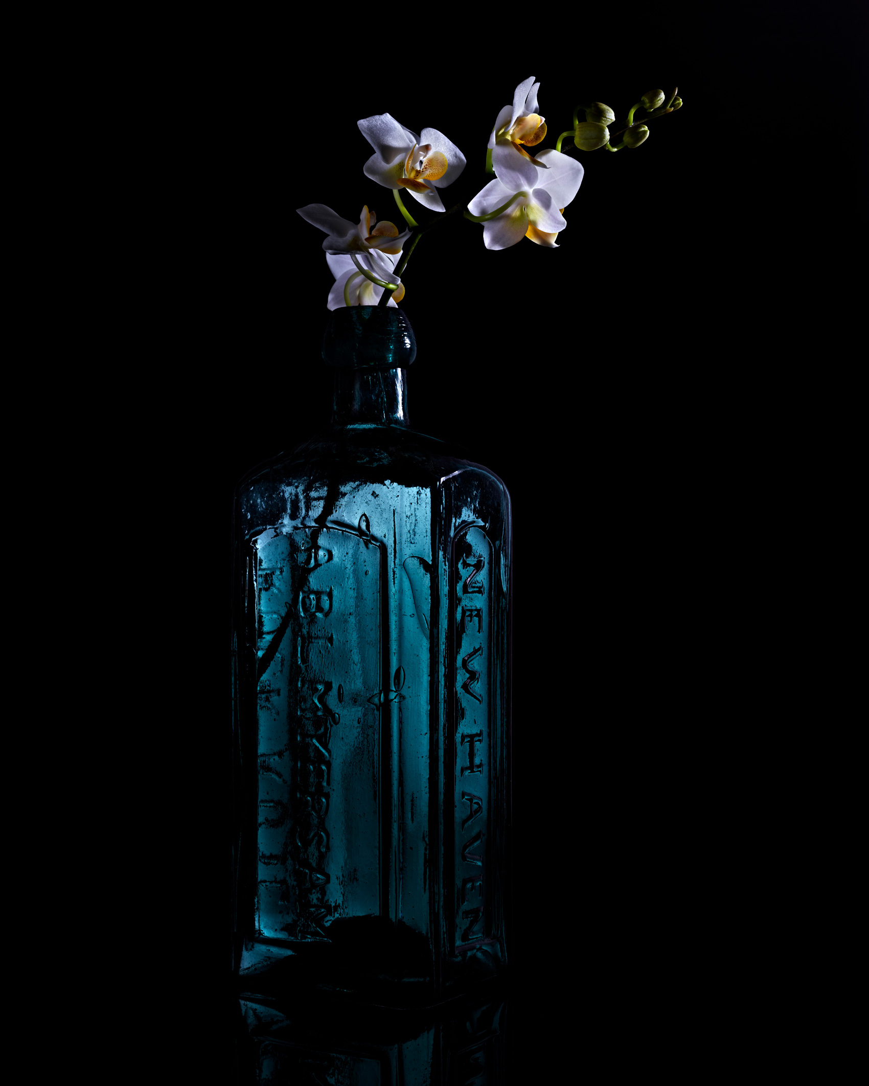 Flowers in a Blue Bottle