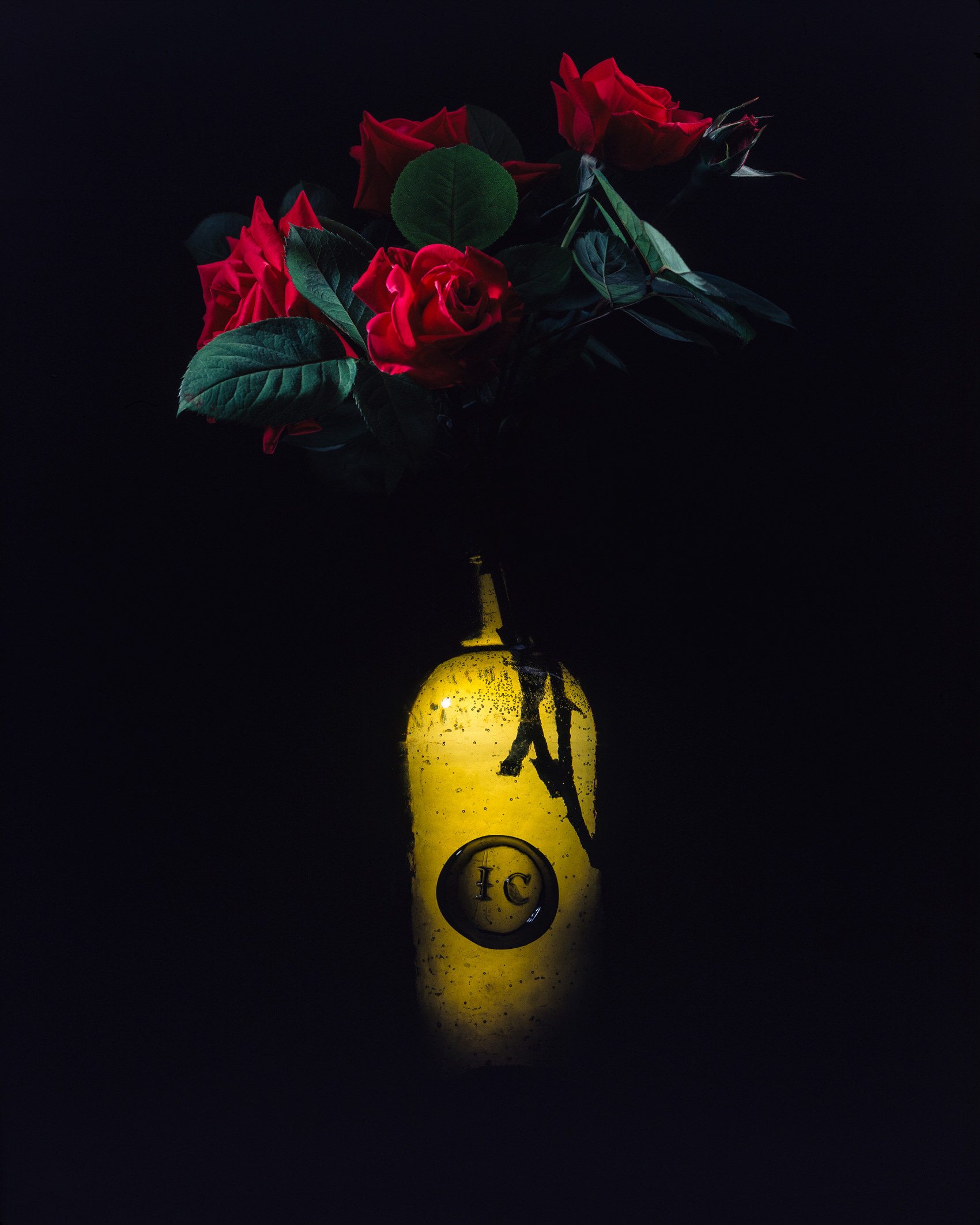 Red Roses in an Old Bottle